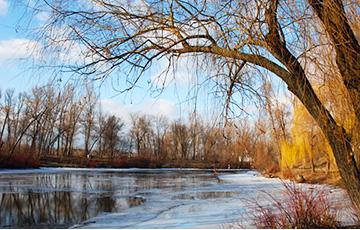 В четверг в Беларуси будет до +8 градусов