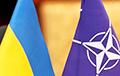 В новой военной стратегии Украины заложат курс на членство в НАТО