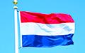 Проевропейские партии победили популистов на выборах в Европарламент в Нидерландах
