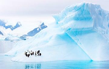Антарктыда пазелянела ад багавіння