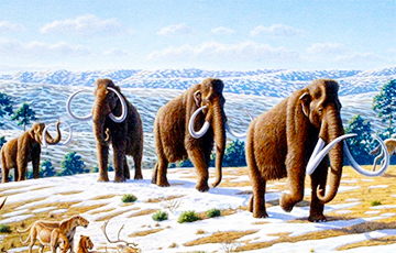 На Тибете нашли произведение искусства времен мамонтов и саблезубых тигров