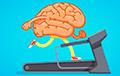 Названыя карысныя прадукты для працы мозгу