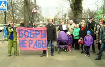 «Бобры не рабы!»: Жители Бобруйска вышли на митинг (Видео, онлайн)