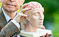 Назван эффективный способ активизировать работу мозга