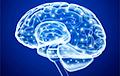 Ученые нашли «включатель» человеческого интеллекта