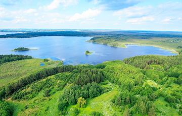Что будет с белорусским климатом через 20-30 лет