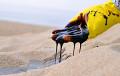 У Расеі не знайшлі ніводнага новага буйнога радовішча нафты