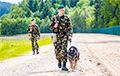 Фотофакт: Контрабандисты натянули трос между Беларусью и Литвой