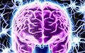 Ученые выяснили, почему уменьшился мозг современного человека