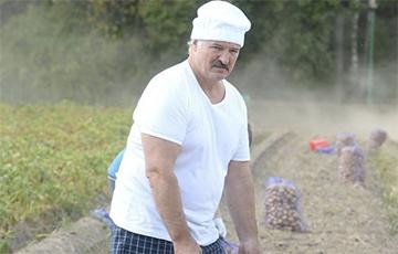 Як Лукашэнка трапіў у скандал на саміце СНД