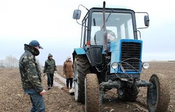 В Вилейке «тунеядцев» отправляют собирать камни на полях