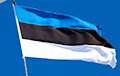Премьер-министр Кая Каллас: Эстония тверда как скала в поддержке Украины