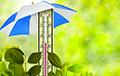 Ученые прогнозируют аномальное лето