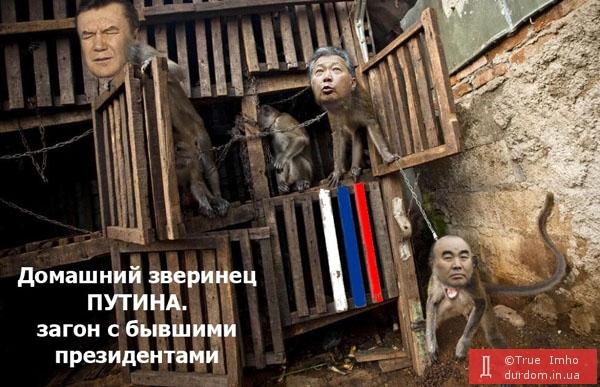 """Путин о Януковиче: """"Это предатель"""". Как Кремль готовил захват Украины - рассказ кремлевского агента Затулина - Цензор.НЕТ 721"""