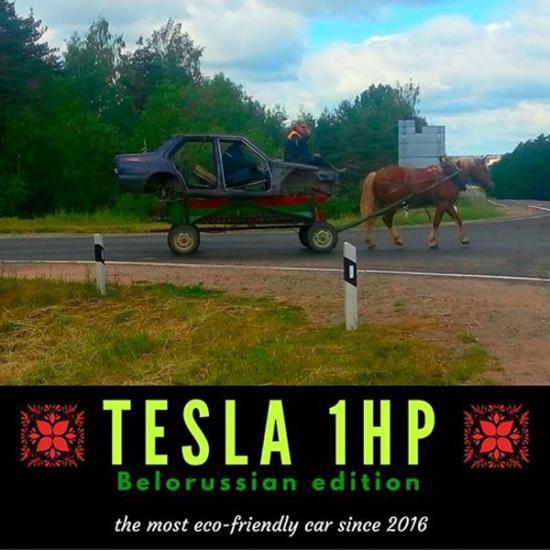 Фотофакт: одна лошадиная сила на белорусских дорогах
