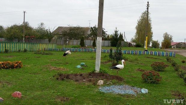 Птичий двор в детском саду
