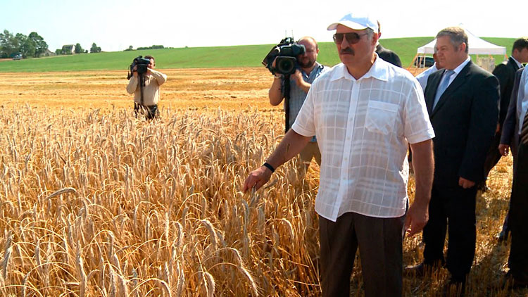Лукашенко обратился кпредседателям райисполкомов: действуйте, власть вваших руках!